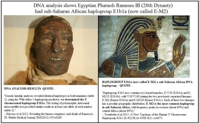 Rameses III haplogroup E1b1a